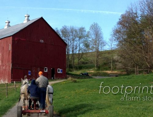 Footprints | A Farm Story | PA Commercial Video