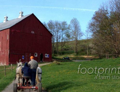 Footprints | A Farm Story | WV Videographer