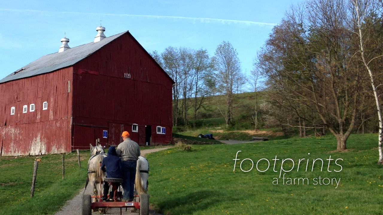 Footprints | A Farm Story | WV Videographer