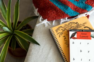 notebooks and books sitting on a tan couch with a woven blanket and agave plant
